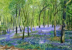 Bluebell Painting 1