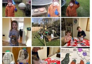 Feeding-the-birds-in-your-garden-14-Jan-2021-at-19_02-COLLAGE