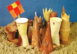 Sandcastle model